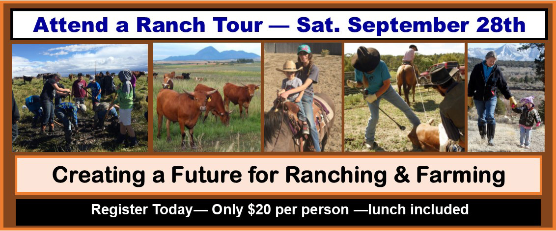Ranch Tour